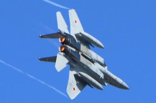 F15_IMG_9613-S2.JPG